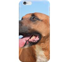 Gemma Dog iPhone Case/Skin
