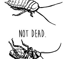 Dead. Not Dead. Roaches by zombieCraig