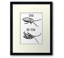 Dead. Not Dead. Roaches Framed Print