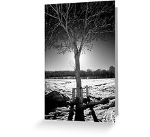 Infrared Silhouette Greeting Card