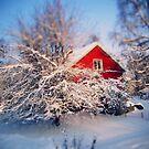 a swedish winter wonderland., by subtitulo