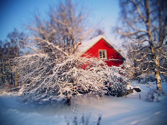 a swedish winter wonderland., by subtitulo