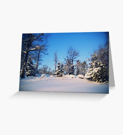 lovely winter, there you are., Greeting Card