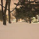Snowy Street by Felix721