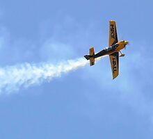 Matt Hall in his formula 1 Race Plane by elsha