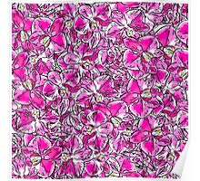 pattern of orchid flowers Poster