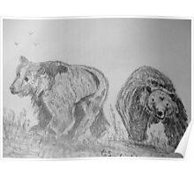 Brown Bear cubs Poster