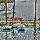 Pier 77 Dinghy Boats by Monica M. Scanlan