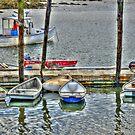 Pier 77 Dinghy Boats by Monica M. Scanlan