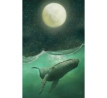 The Whale & The Moon Photographic Print