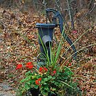 pump and geraniums. Port Franks, Ontario, Canada by creativegenious