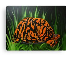 Boxer the Turtle Canvas Print