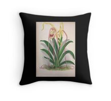 Iconagraphy of Orchids Iconographie des Orchidées Jean Jules Linden V4 1888 0130 Throw Pillow