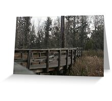 Winding Path, Phinizy Swamp Nature Park Greeting Card