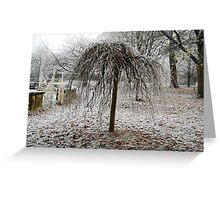 Frosty Willow Tree Greeting Card