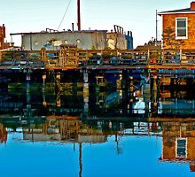 Houseboats, Gate 6, Sausalito, California, USA by Scott Johnson
