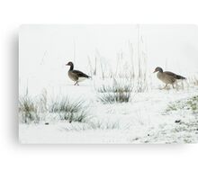 Into the white, wide world Metal Print