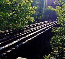 Prism On The Rails by Paul Lubaczewski