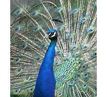 Show your true colours Photographic Print