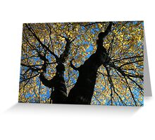 Blue, Yellow, Black Greeting Card