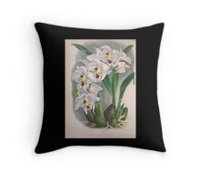 Iconagraphy of Orchids Iconographie des Orchidées Jean Jules Linden V4 1888 0014 Throw Pillow