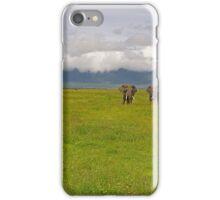 Ngorongoro Elephants iPhone Case/Skin