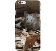 ...dangerous species in the ZOO... iPhone Case/Skin