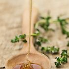 Honey by Ryan Carter