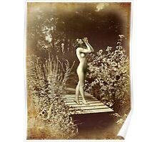 Vintage Elegance Poster