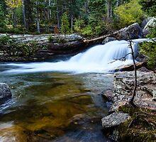 Copeland Falls Rocky Mountain National Park by bengraham