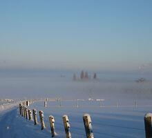 Into The Mist by John Dunbar