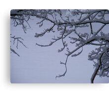 Snow Scrolls Canvas Print