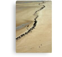 The Beach at Carteret, France Canvas Print