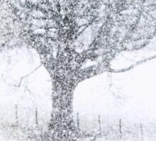 Snow Fall Sticker