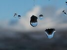 rain on window panes by millymuso
