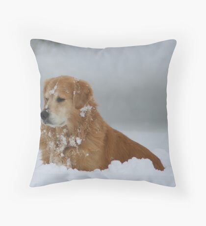 I Got My Eye On You Mr. Mole!FEATURED PHOTO AND TOP TEN CHALLENGE Throw Pillow