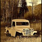 Truck in a Field~Taos, New Mexico by Giamarie