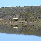 Reflections,Bird Lake, American River, Kangaroo Island,South Australia. by elphonline
