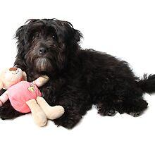 Marli w/ teddy 1 by xTRIGx