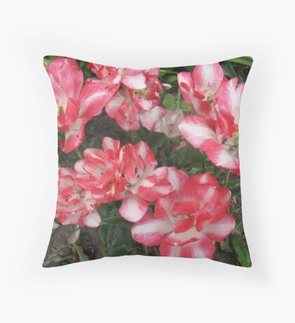 Tulip Folly Throw Pillow