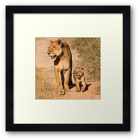 Mother and child 2 by jozi1