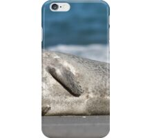 Adorable Common Seal iPhone Case/Skin