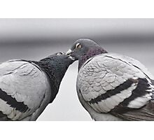 That Kiss - That Kiss - 2 Turtle Doves Photographic Print