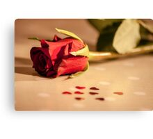 Rose table Canvas Print