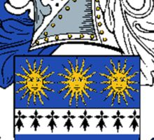 Coat of arms (family crest) for last-name or surname Nicholson . Heraldry banner for your name. Sticker