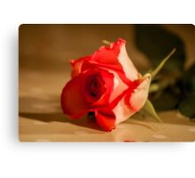 Rose table top Canvas Print