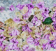 Healing leaves by Ayami