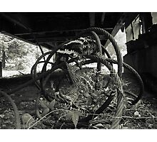 Steam Donkey Project #188 Photographic Print