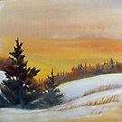 Winter Light by bevmorgan