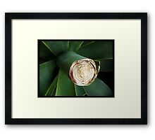 The Great Green Grow Framed Print